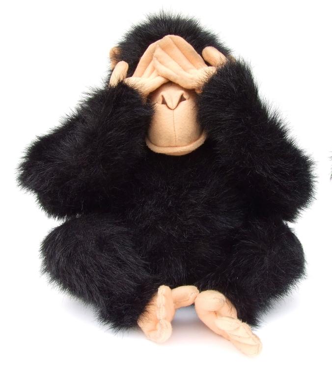 blind monkey
