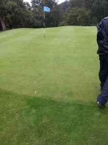 If you look carefully you will see a ball near the pin. That was mine - shortly before I putted it for one of the rarest birdies on the planet!