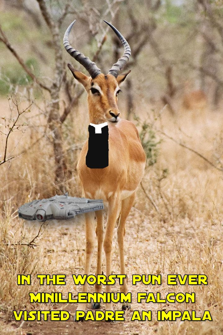 mf-padre-an-impala